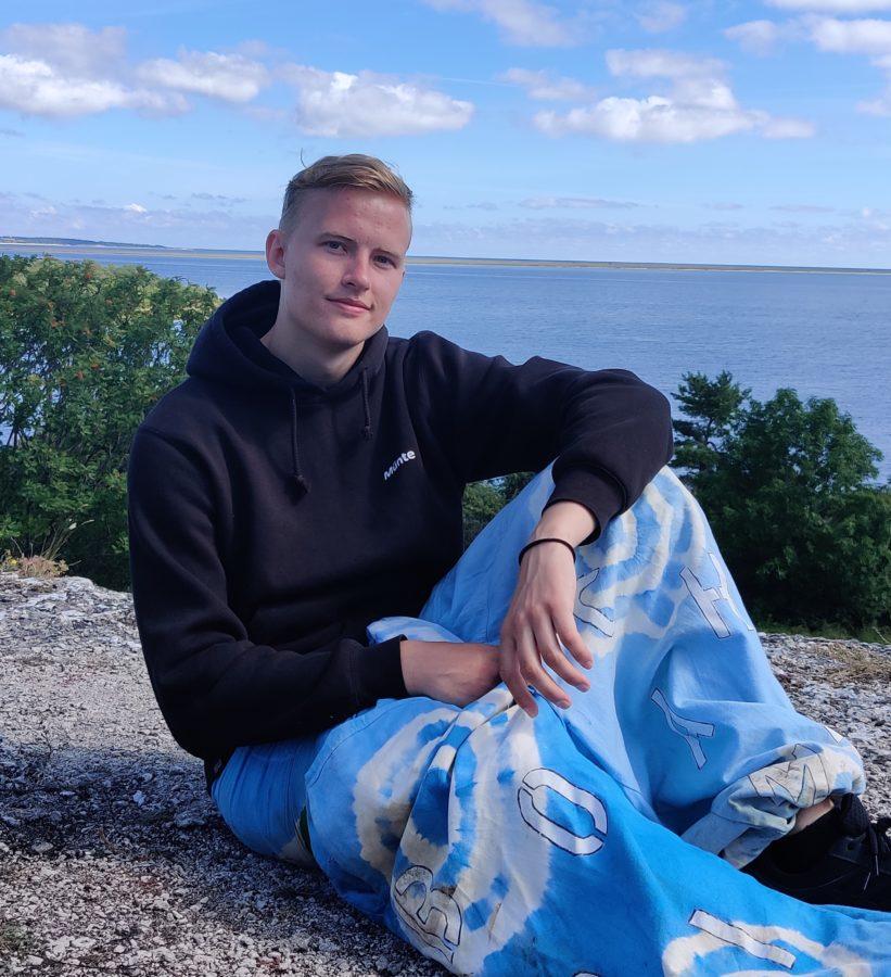 Borik Ronnby